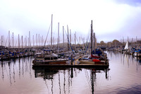 Sailboats at Monterey Marina
