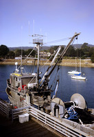 Commerical fishing boat docked in Monterey Harbor.